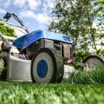 What Are The Essential Garden Maintenance Jobs For Spring?