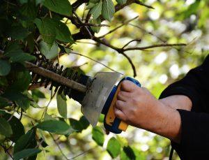 hedge cutters lancashire